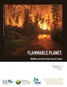 Flammable Planet: Wildfires and the Social Cost of Carbon
