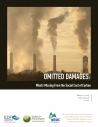 Omitted Damages: What's Missing from the Social Cost of Carbon
