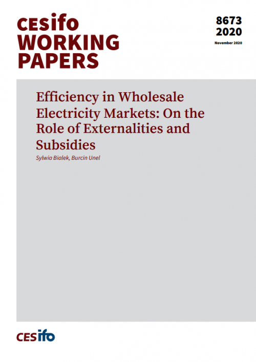 Efficiency in Wholesale Electricity Markets Cover
