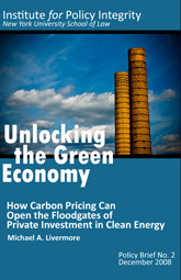 Unlocking the Green Economy