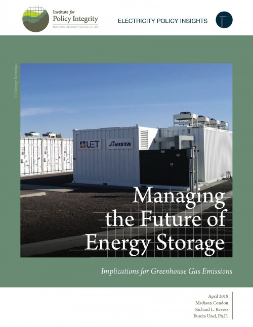 Managing the Future of Energy Storage Cover