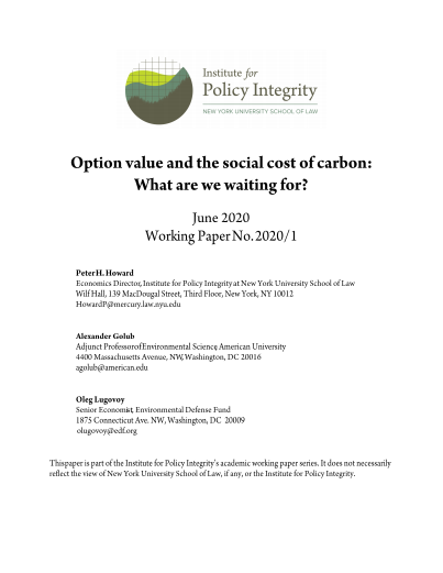 Option Value and the Social Cost of Carbon